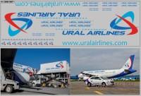 1:43 Набор декалей Аэропорты (полосы, надписи, логотипы), вариант 4 (200х70)