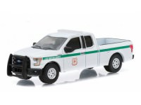 1:64 FORD F-150 United States Forest Service Law Enforcement (патруль лесной службы) 2015